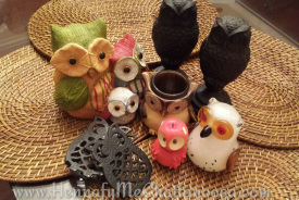 My Owl Collection